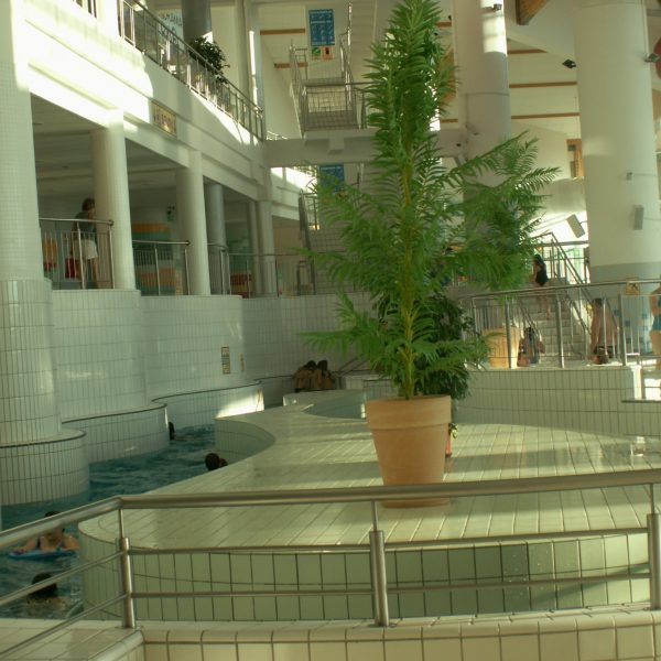 ZAWOJA 2008 (3)-min